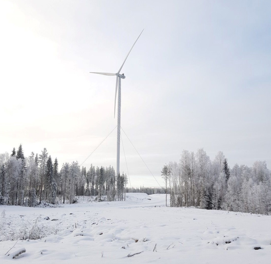 Cable stayed wind turbine